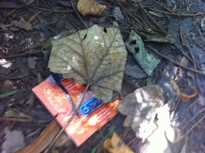 Discarded condom wrapper in the bushes near the memorial. Photo: the Authors